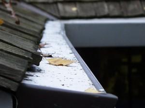 Cedar roof closeup of Gutterglove